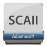 Control de inventarios (SCAII)